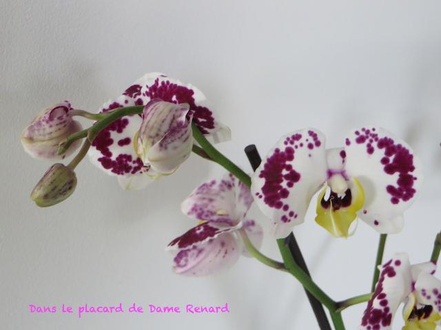 Jeudi Coquetterie: Saint Valentin et amour...