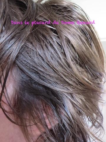 Lhuile damandes affermit les cheveux