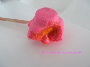 Pink_Flamingo_Lush_07