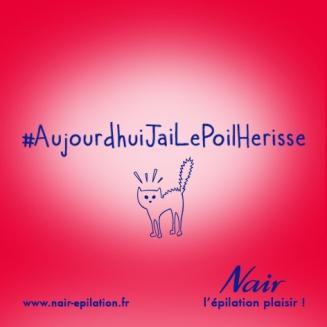 Nair_BilletsdHumeur_PoilHerisse