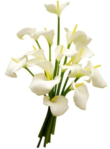 bouquet-d-arums-400x400-21474