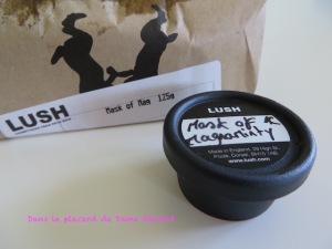 Mask_of_Magnaminthy_Lush_02