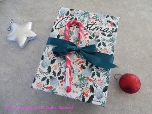 my-little-christmas-box-decembre-2016-04