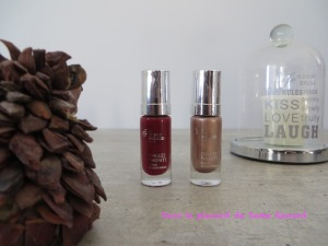 vernis-a-ongles-dr-pierre-ricaud-automne-hiver-2016-01