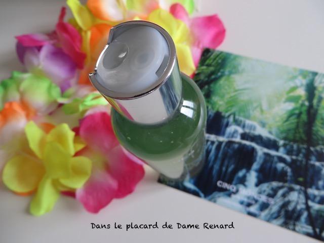 Gelee-du-Bresil-Rituel-de-Bahi-Bresil-Cinq-Mondes-03