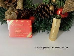 noel-d-or-flamboyant-dr-pierre-ricaud-01