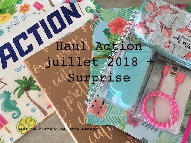 haul-action-juillet2018-01