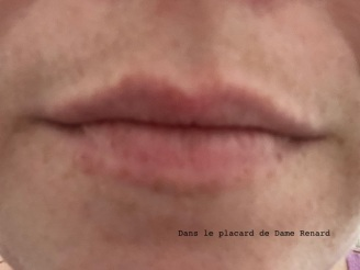 levres-sans-ultra-matte-liquid-lipstick-les-macarons-l-oreal-infinite-spice-01