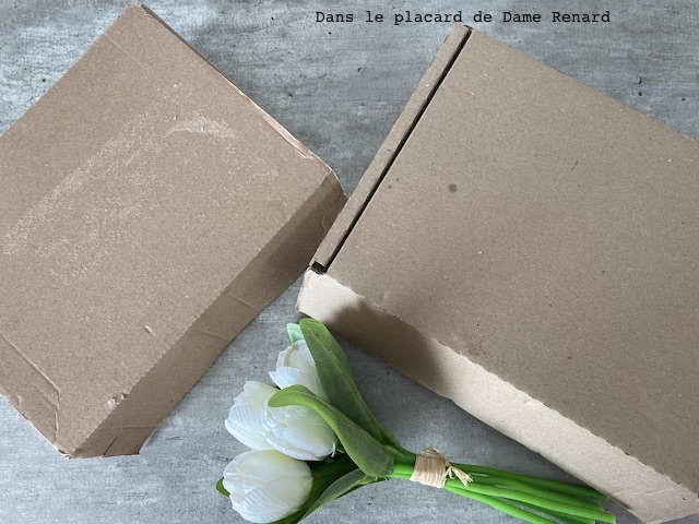 box-avril2020-02