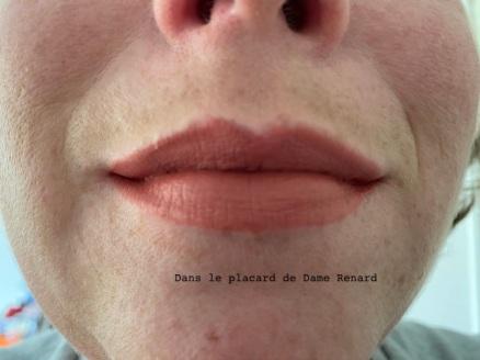 levres-avec-rouge-a-levres-bold-matte-lip-power-josephine-03