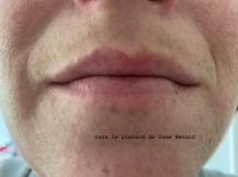 levres-sans-rouge-a-levres-bold-matte-lip-power-josephine-01