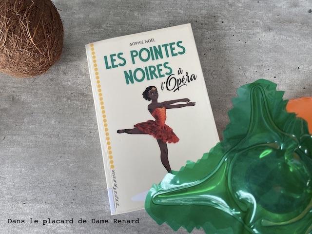 les-pointes-noires-a-l-opera-sophie-noel-01